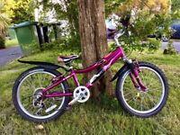 Gary Fisher (Trek) lightweight girls bike.