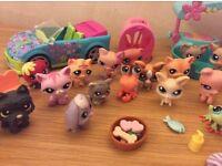 Littlest pet shop bundle car 28 pets