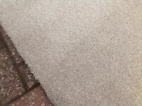 Carpet,Brand New heavy domestic.Totally unused 7m X 3.4m