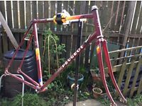 Classic Retro PEUGEOT Racing Bike FIXIE Frame n Forks