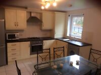 Luxury Newly Refurbished 2 Bedroom Apartment - Too Late