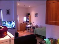 Fabulous Studio Flat Available in Acton Great Location !!!