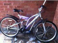 Ladies Baracuda bike