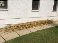 Bamboo garden canes free