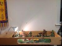 Tortoise table and setup