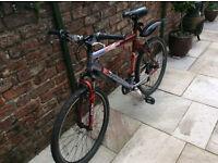 Barracuda Xenon Mountain Bike