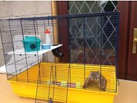 Hamster house complete with all you need