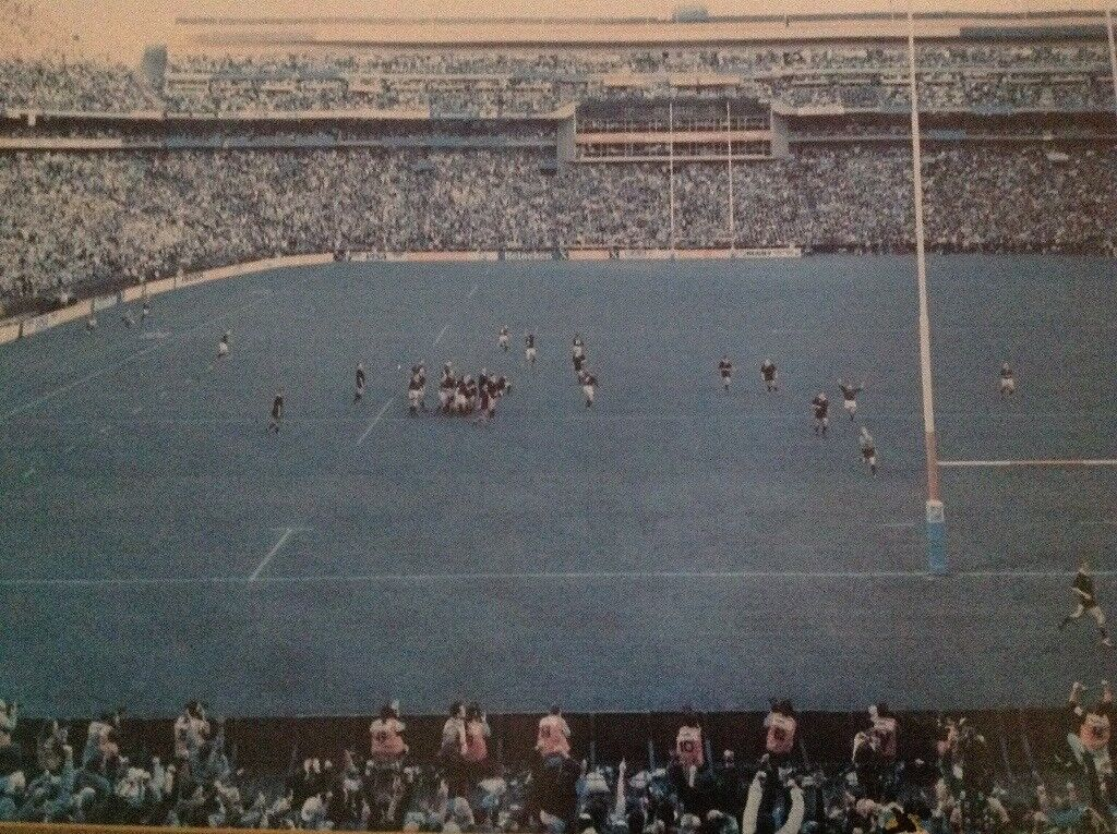 Rugby 1995 World Cup Final Picture