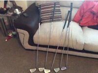 Royal scot golf clubs
