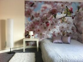 DOUBLE ROOM TO RENT - DERBY - ALLENTON
