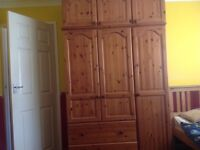 Big wood wardrobe