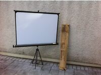 Vintage Fins White Projector Screen - made in Italy