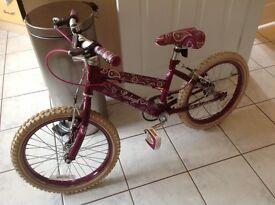 Raleigh Krush bike