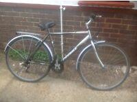 Mans Pro-Bike HY Brid large frame 18 sp