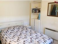 Double Room in Female Flatshare