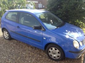 Blue polo for sale