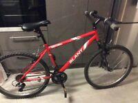 Teenagers Apollo slant bike