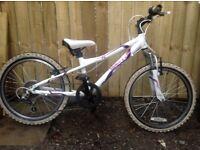 Girls Moutain Bike Dawes Redtail