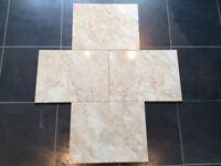 Wall Tiles - Italian Marble 'effect' bathroom/ cloakroom / kitchen