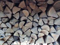 100 Ash logs