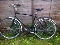 Raleigh classic bike