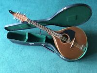 Beautiful Joe Foley 1990 Mandola (used as short scale Bouzouki)