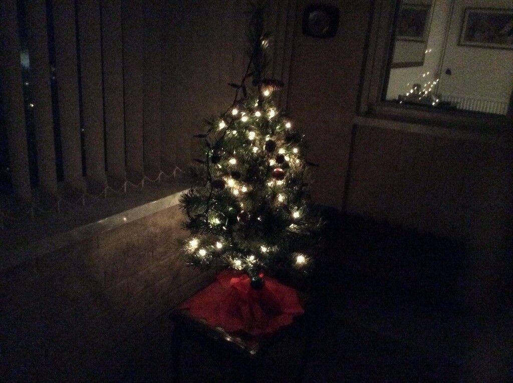 Christmas tree. Cheltenham ... - Christmas Tree In Cheltenham, Gloucestershire Gumtree