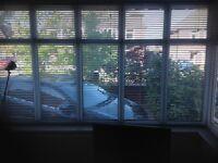 Metallic silver window blinds