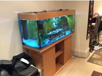 Fish tank 4ft 40 litres with cabinet