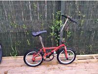 Daewoo semi fold up bike. Great for commuting £50 Ono (Not a car)