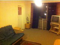 large three bedroom flat near to university