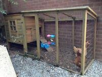 Hen coop,run & two hens