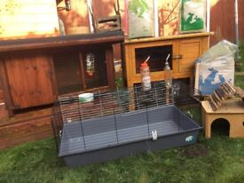 3rabbits cages +accessories +food