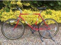 APOLLO bike Colorado CLASSIC