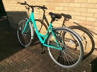 Ladies Apollo Cafe (Mint Green) Bicycle