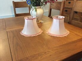 Two Beautiful Vintage small lampshades