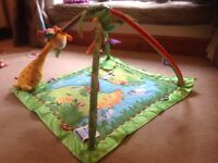 Fisher Price jungle play gym