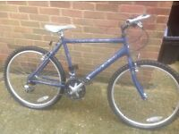 Retro Man Raleigh Max 21 speed Made in England