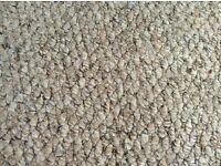 Natural Berber Carpet