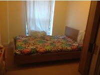 Spacious Double room in 2-bed room flat