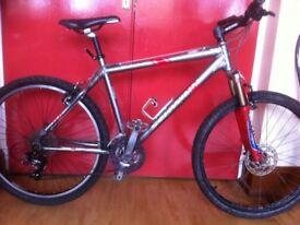 "Men's Mountainbike: fully refurbished 18"" lightweight Schwinn Moab, 24-speed"