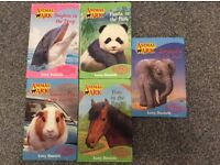 Animal Ark Books x 5 by Lucy Daniels