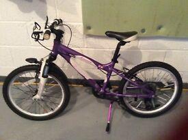 "Bicycle Carrera Luna 20"" wheels"