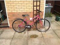 Women's Dusky Pink 24 inch Wheel Bike