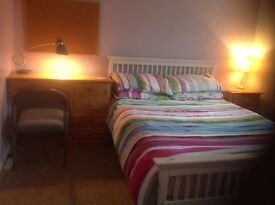Spacious Double Room for rent in friendly mixed house. Excellent transport links.