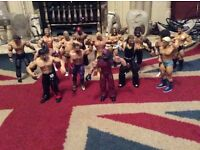 15 Wrestling figures, toys WWF etc. expensive when new (lot 1 of 4)