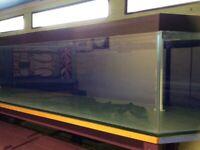 Long 220 litre aquarium