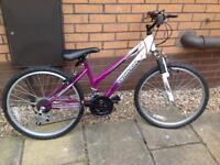 Girls Raleigh Bicycle -Snowdon Terrain