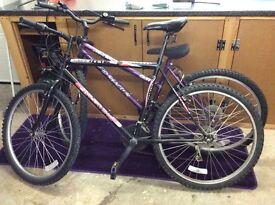 Mountain bikes 2 x adults