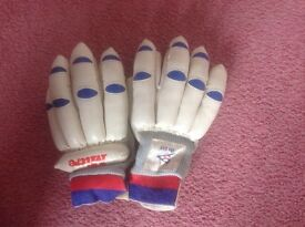 Boy's Cricket gloves
